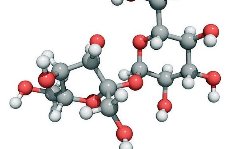 sucrose-molecule-laguna-design